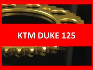 Duke 125 13-17