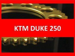 Duke 250 15-17