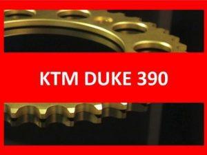 Duke 390 13-17