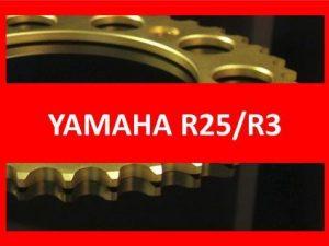 R25/R3