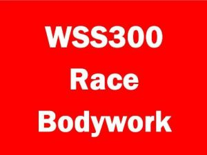 WSS300 Race Bodywork